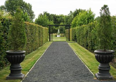 Lacebark, manicured gardens